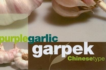 Новый сорт чеснока Garpek купить из Испании